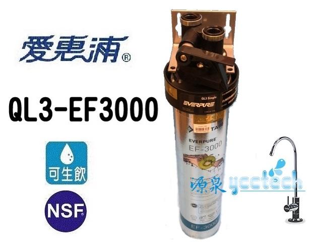 [本月下單隨貨贈7-11禮卷500元] 愛惠浦 EF series全流量強效碳纖維系列淨水器 EVERPURE PURVIVE-EF3000【全省專業安裝】 1